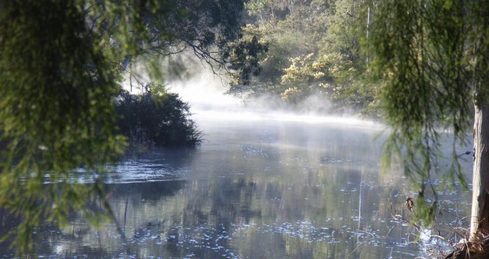 Misty Yarra by Ian Penrose